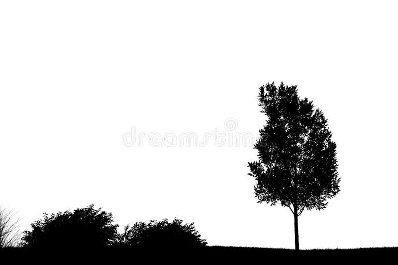 Download Tree silhouette stock image. Image of bush, life, background - 12795803