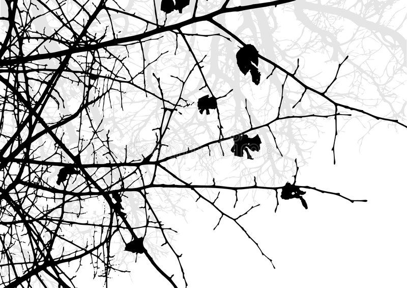 Tree silhouette royalty free illustration
