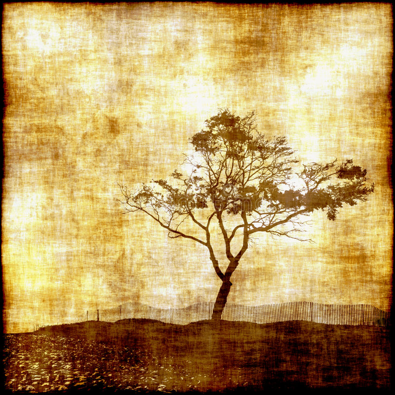 Tree Silhouette. Vintage photo based tapestry of lone tree silhouette scene on grunge fabric stock illustration