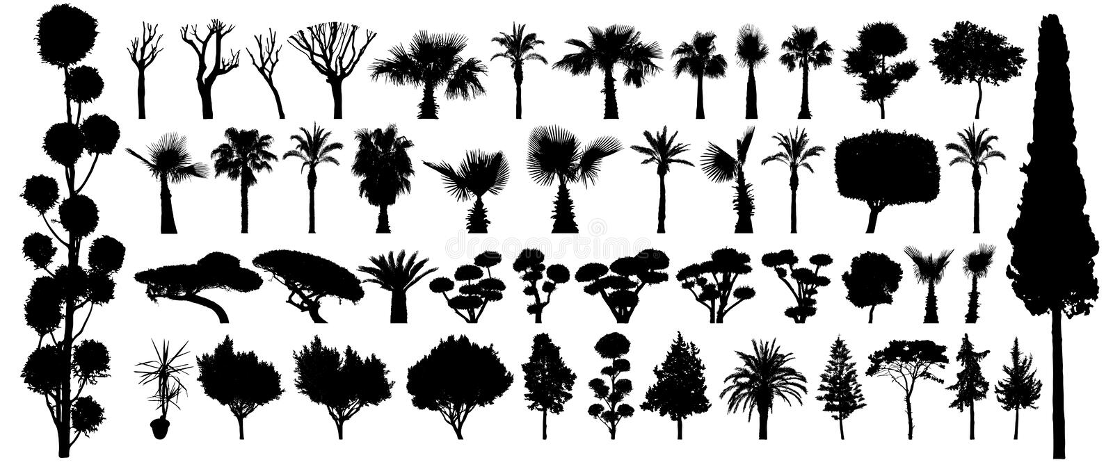 Tree silhouette black vector. Isolated set forest plants bushes on white background.  stock illustration