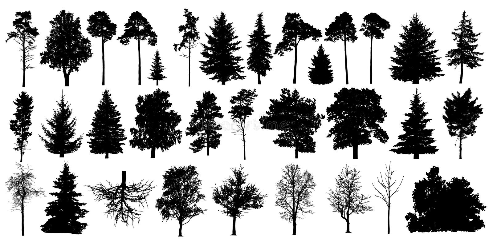Tree silhouette black vector. Isolated set forest trees on white background.  royalty free illustration