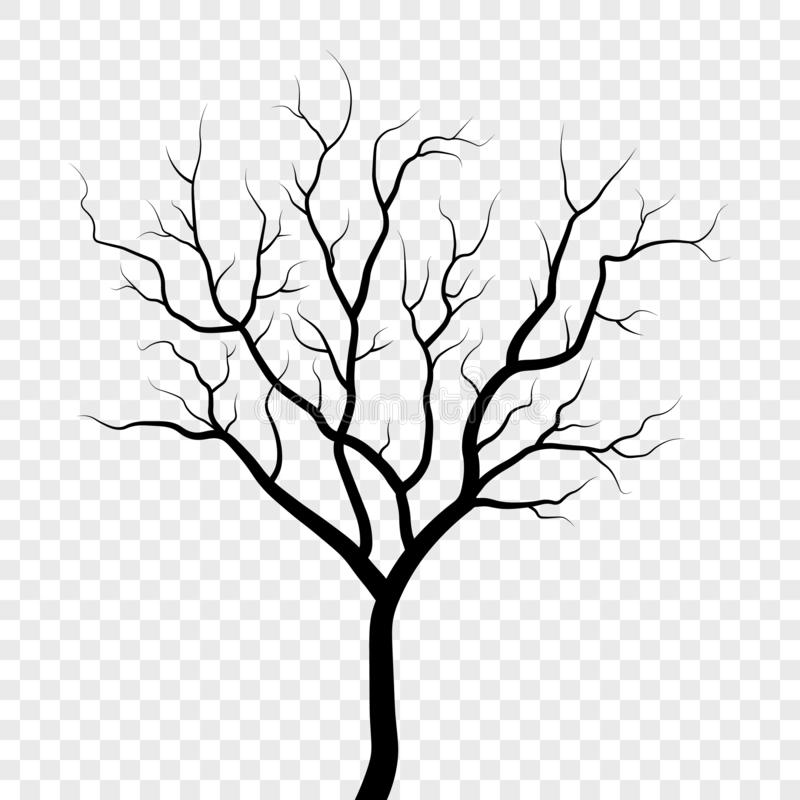 Free Tree Silhouette Illustration Stock Images - 138829414