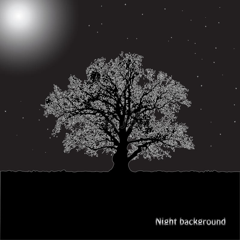 Free Tree Silhouette In A Moonlight. Stock Photo - 27035140