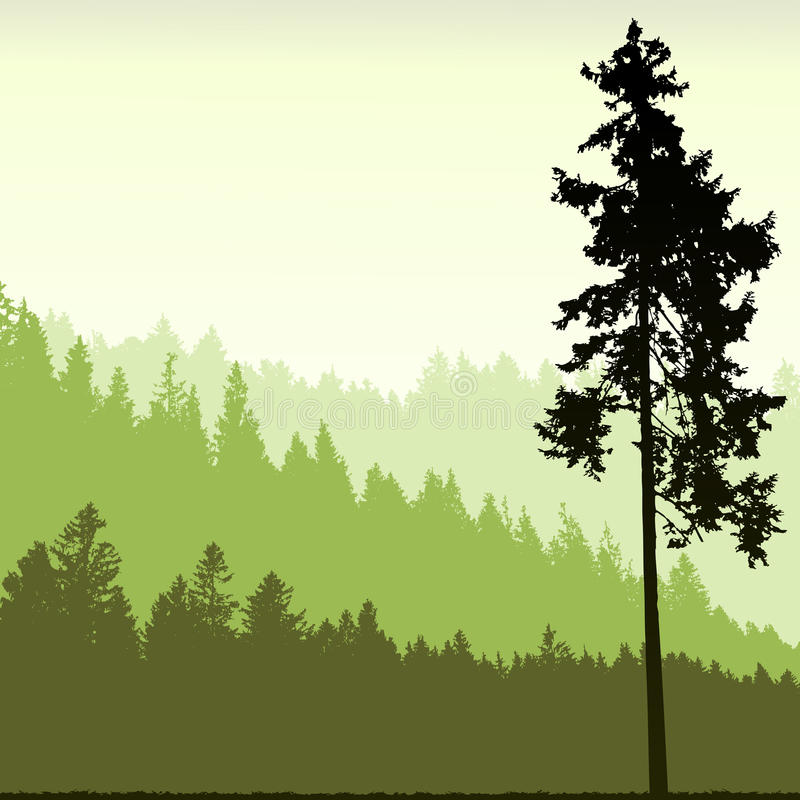 Free Tree Silhouette On An Abstract Background Stock Photo - 24291450
