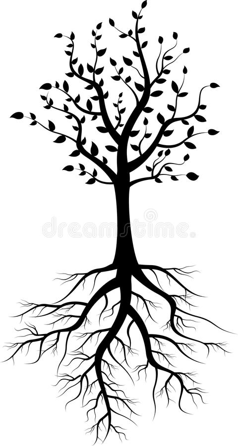 Tree silhouette with roots royalty free illustration