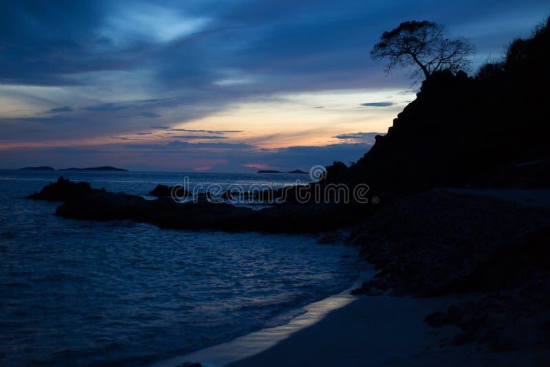 Tree silhouette on sea sunset background. stock photo