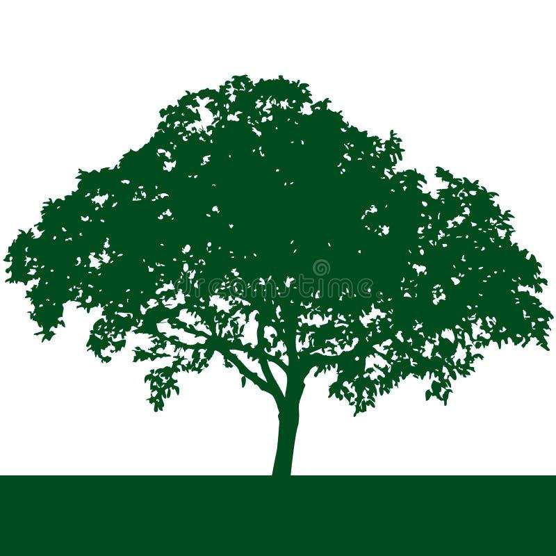 tree silhouette vector vector illustration