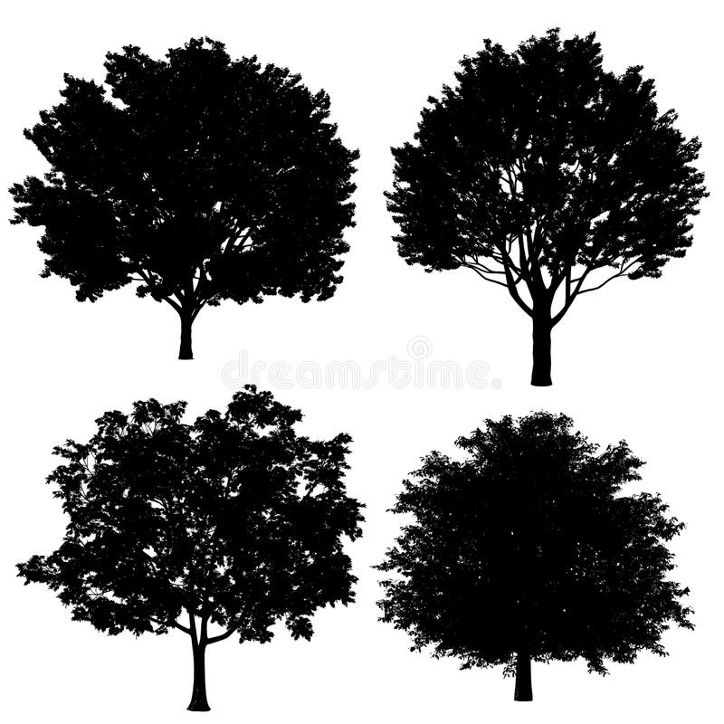 Download Tree silhouette stock illustration. Image of color, design - 36409052