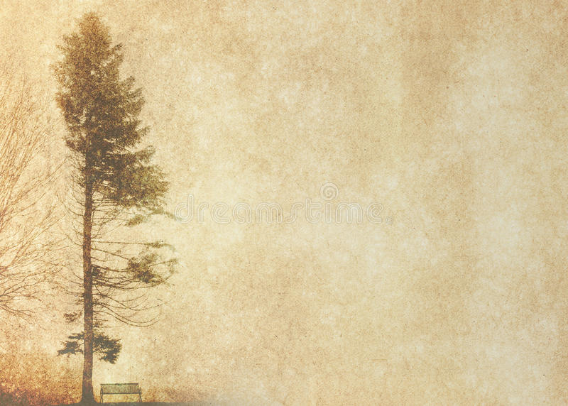 Download Tree Silhouette In Winter On Vintage Background Stock Photo - Image: 35202674