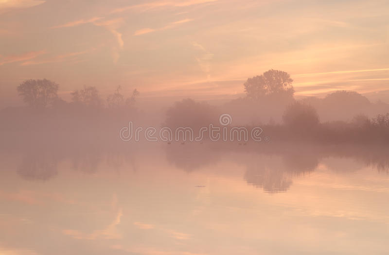 Download Tree Silhouettes By Lake During Misty Sunrise Stock Image - Image of season, people: 35648081