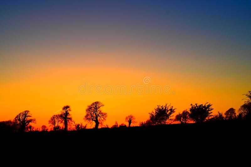 Tree silhouettes in orange yellow sky. Sunset in distance over landscape. Showing trees and land as black shapes against an orange yellow sky. Some blue still stock photos