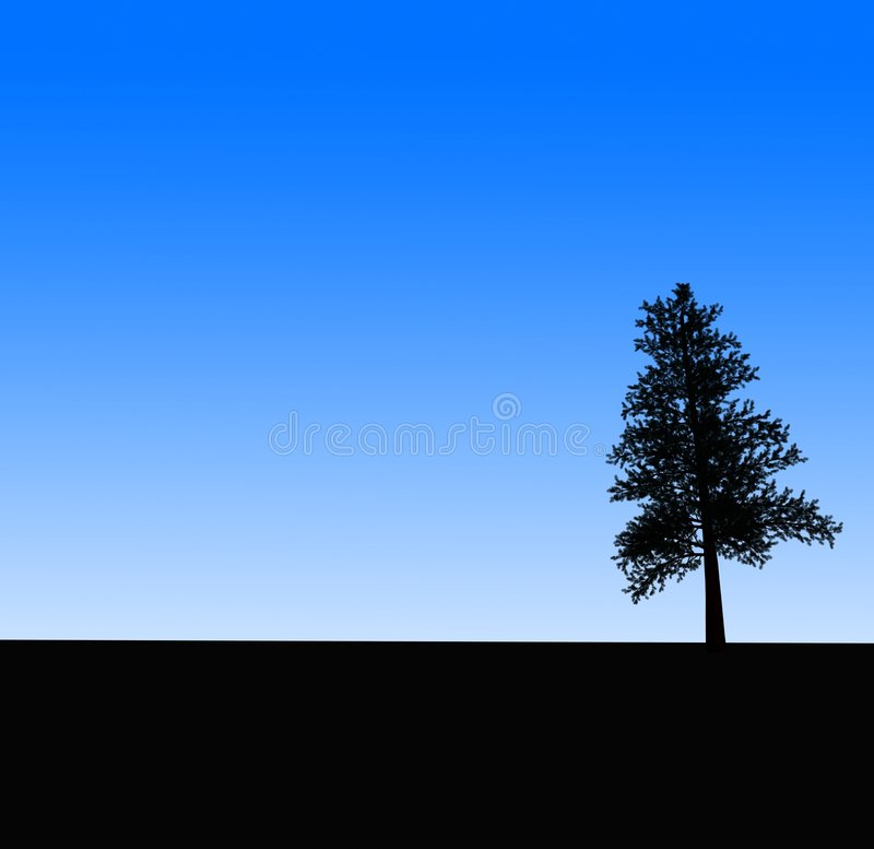 Tree silhoutte royalty free stock photo