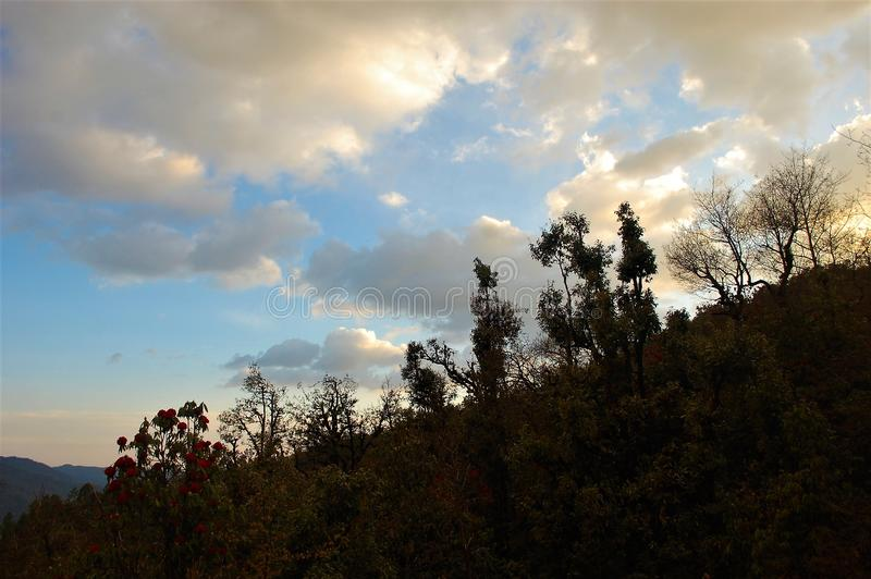 Tree and sky showing beauty of nature with beautiful landscape. Beautiful tree, rocks and sky with just nears to mountain showing beauty of nature. With a stock photo