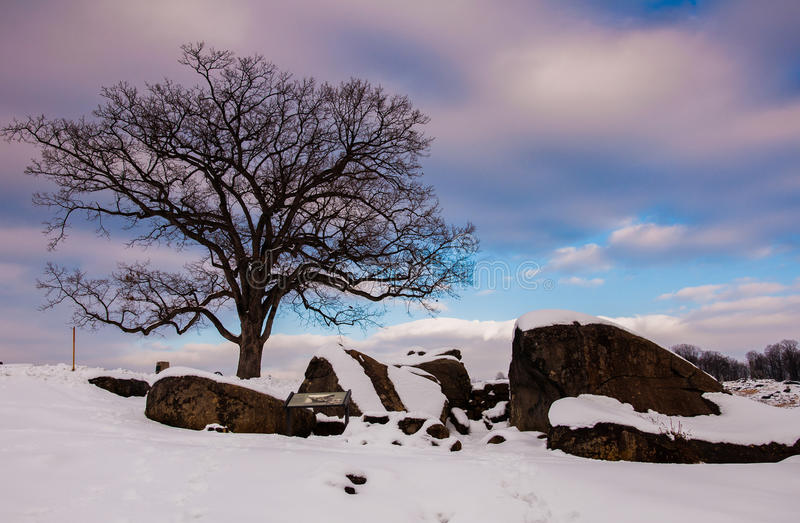 A tree and snow covered rocks at Devil's Den, in Gettysburg, PA royalty free stock photos