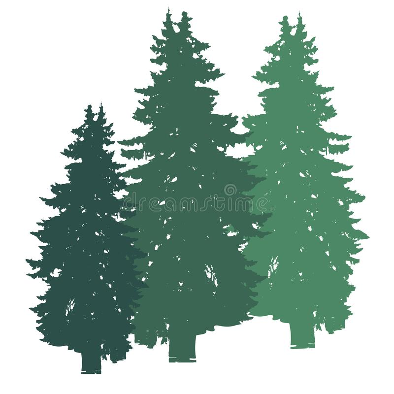 Spruce tree realistic silhouette isolated on white background royalty free illustration