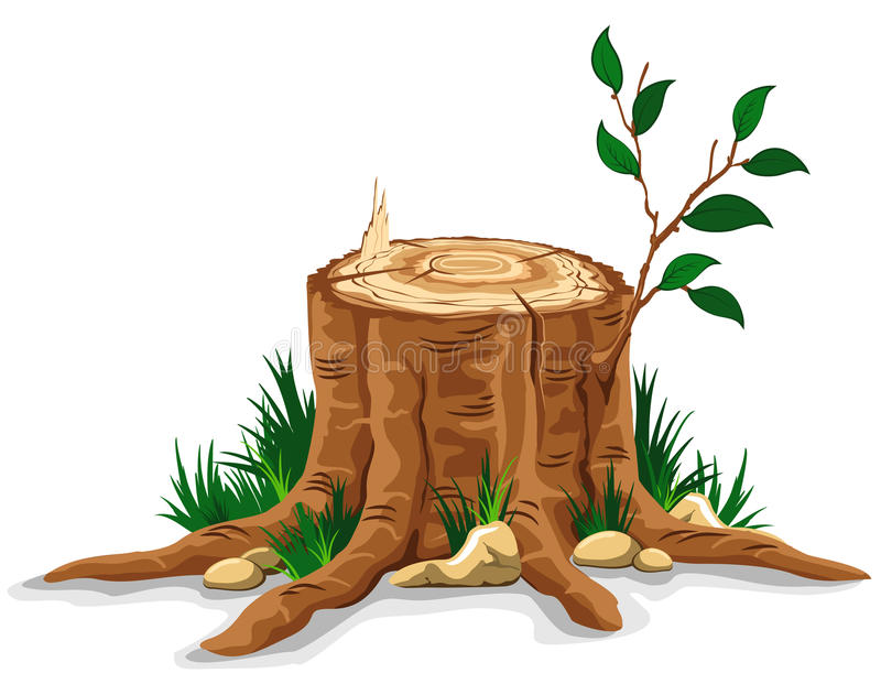 Tree stump. Young branch on the old tree stump. Detailed vector illustration