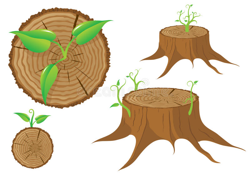 Download Tree Stump And Green Plant Shoot, Vector Stock Vector - Image: 27430226