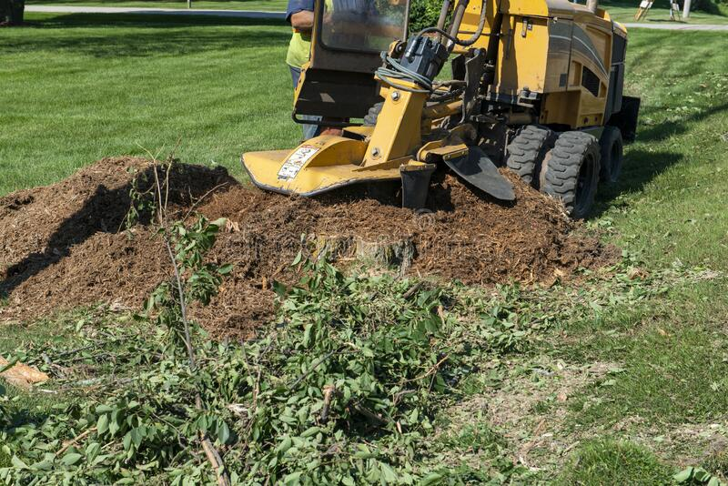 Tree Stump Grinding, Removal, Grinder royalty free stock images