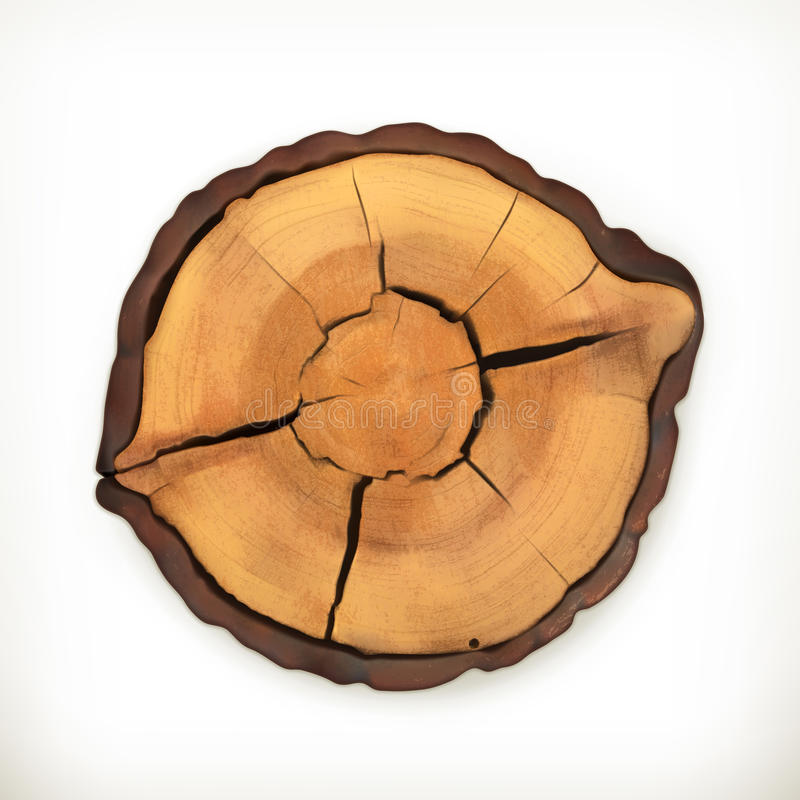 Tree stump, round cut with annual rings stock illustration