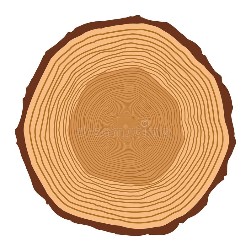 Tree trunk rings design isolated on white background.  vector illustration