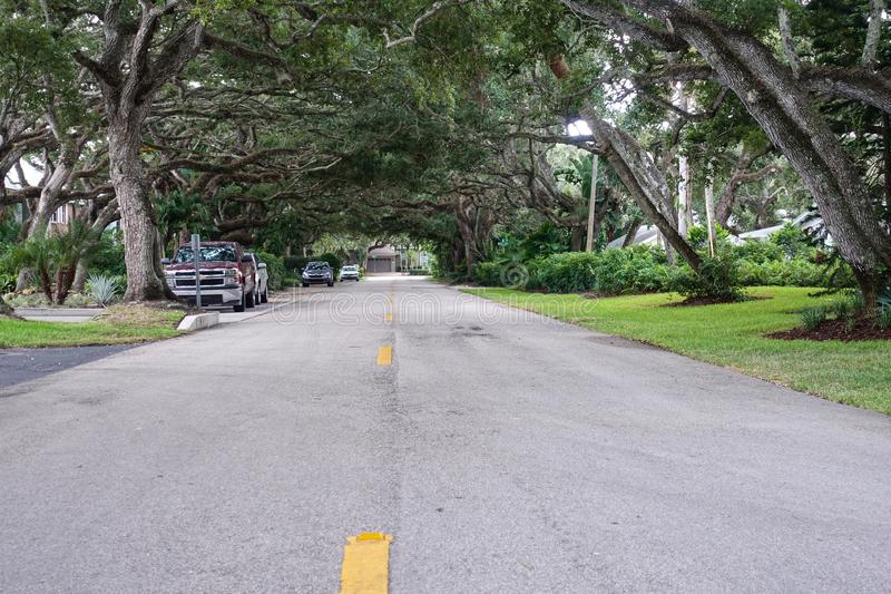 Tree Tunnel in a neighborhood. Vero Beach,FL/US-7/23/19: Tree tunnel along a neighborhood street with parked cars royalty free stock image
