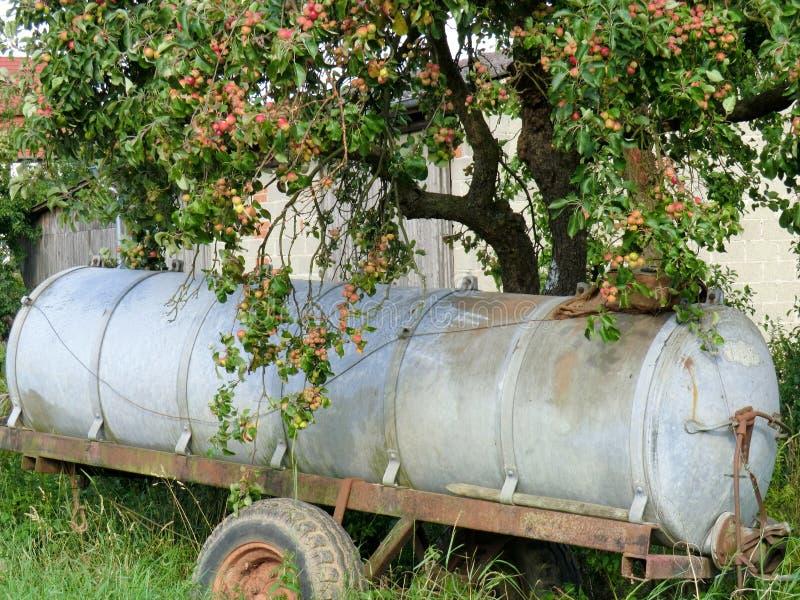 Tree3 imagem de stock