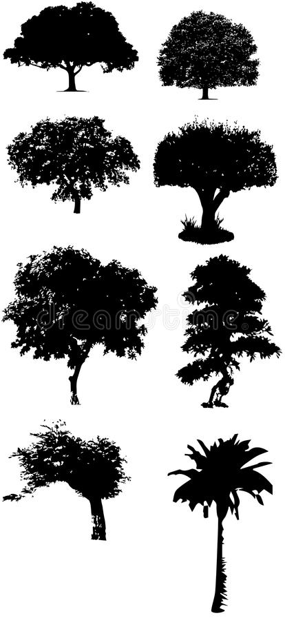 Tree silhouette vectors royalty free illustration