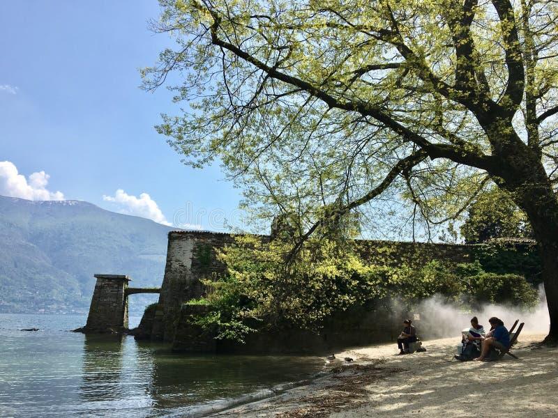 Tree, Water, Lake, River stock photos