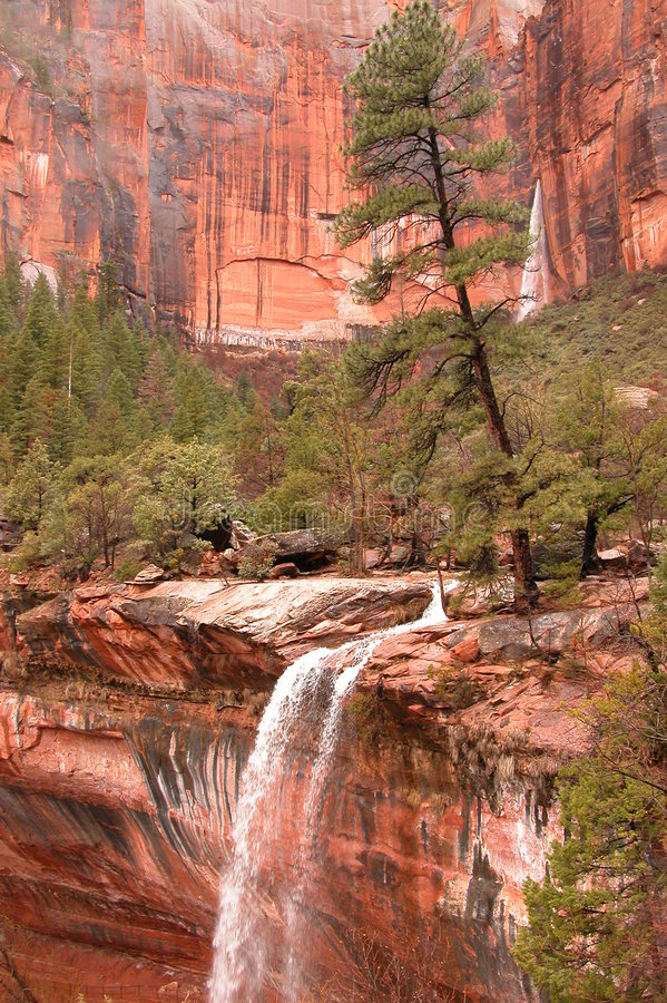 Download Tree Waterfall stock image. Image of sandstone, zion, waterfall - 165365