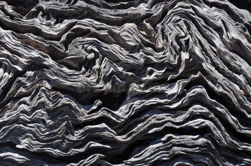 Tree Waves: Abstract of Tree in Western Australia. Closeup of brownish grey tree trunk bark with a wavy, curvy textured surface, complete background abstract stock photography