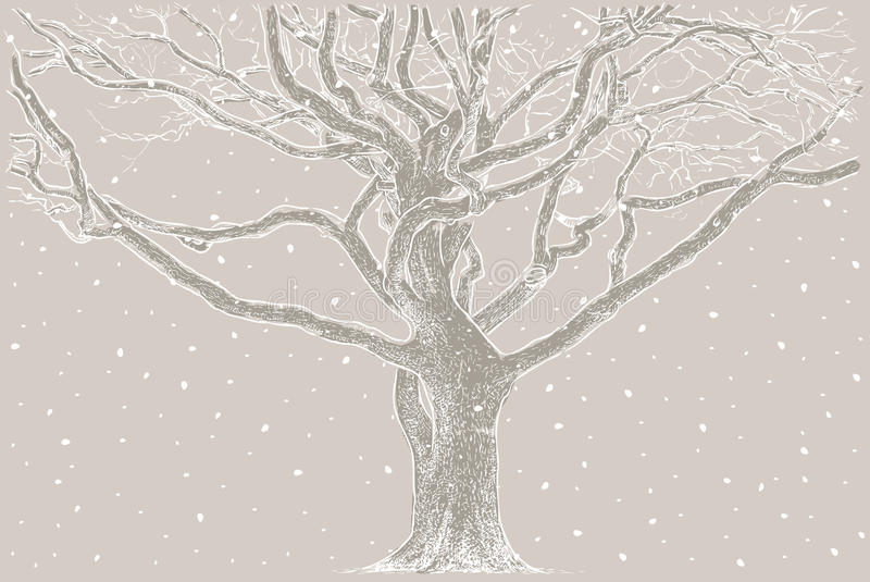 Tree in the winter royalty free illustration