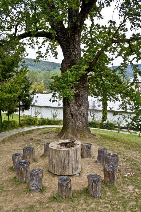 Download Tree of wishes stock image. Image of entreaties, wood - 20755871