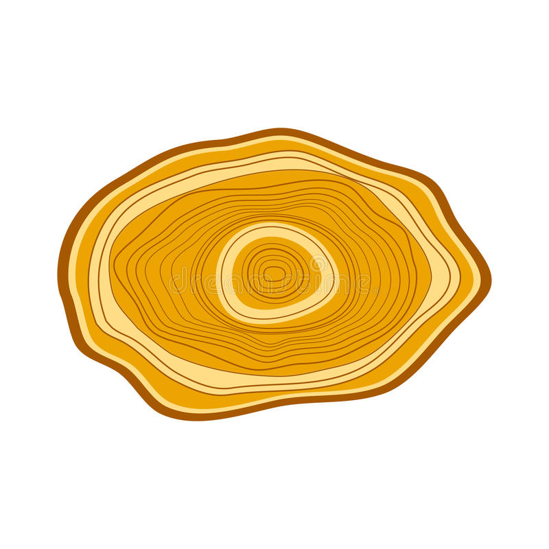 Download Tree wood slices vector. stock vector. Image of natural - 83703447