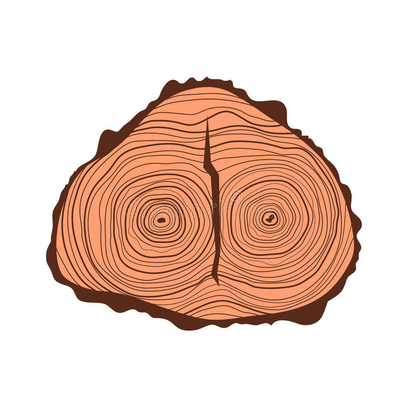 Download Tree Wood Slices Vector. Stock Vector - Image: 83703794