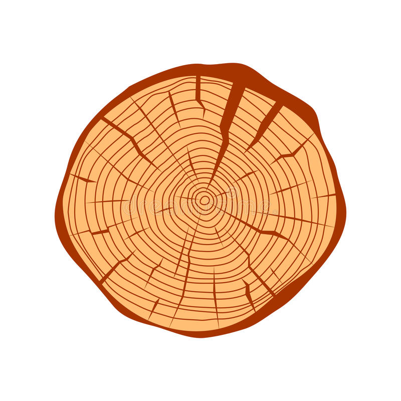 Download Tree Wood Slices Vector. Stock Vector - Image: 83704264