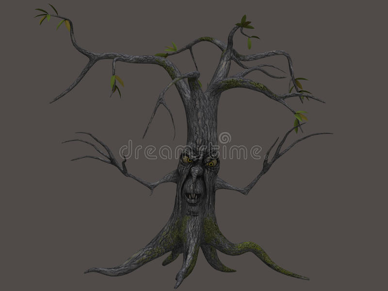 Tree, Woody Plant, Branch, Plant royalty free stock photo