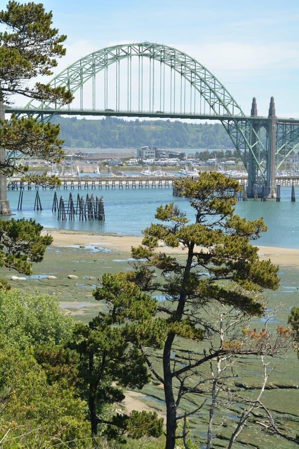 Tree and Yaquina Bay Bridge, Newport, Oregon. This is a tree and the historic Yaquina Bay Bridge near Newport, Oregon royalty free stock image