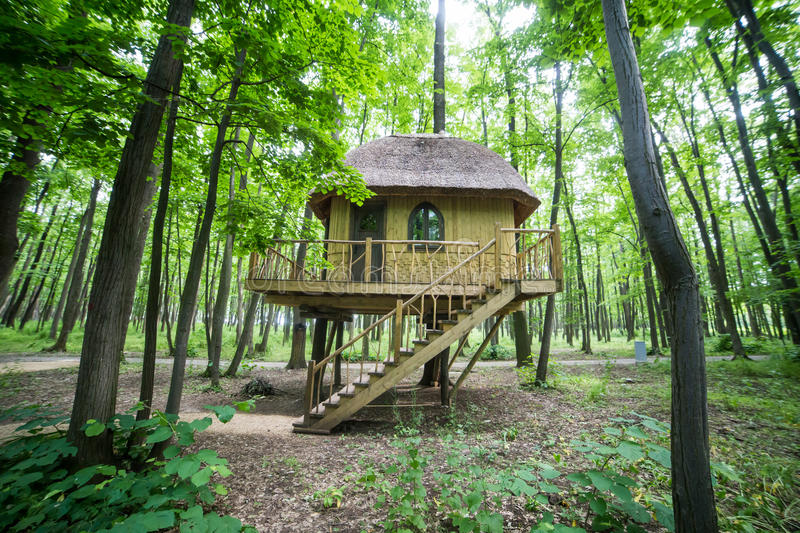 Download Treehouse in forrest stock photo. Image of climb, playground - 41495994