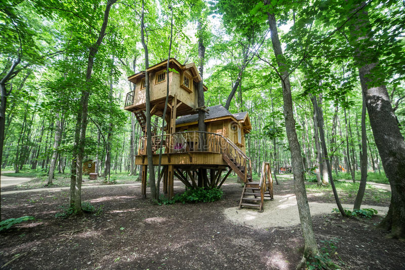 Treehouse in het meest forrest royalty-vrije stock afbeelding