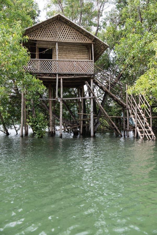 Treehouse på den Neyyar floden royaltyfri fotografi