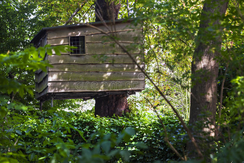 Treehouse in the woods stock photos