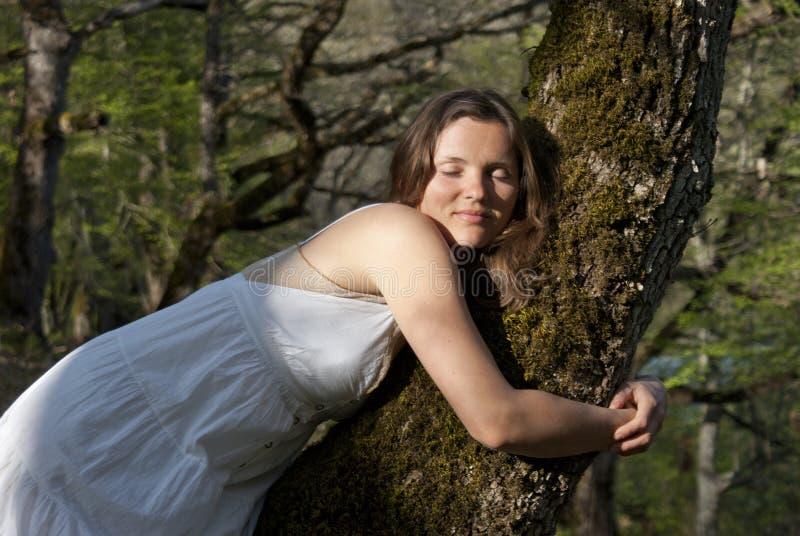 Treehugger stockfotos