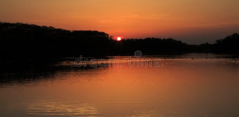 Treeline και καστανόξανθο ηλιοβασίλεμα που απεικονίζονται στο νερό Swithland, Swithland Λέιτσεστερ στοκ εικόνα