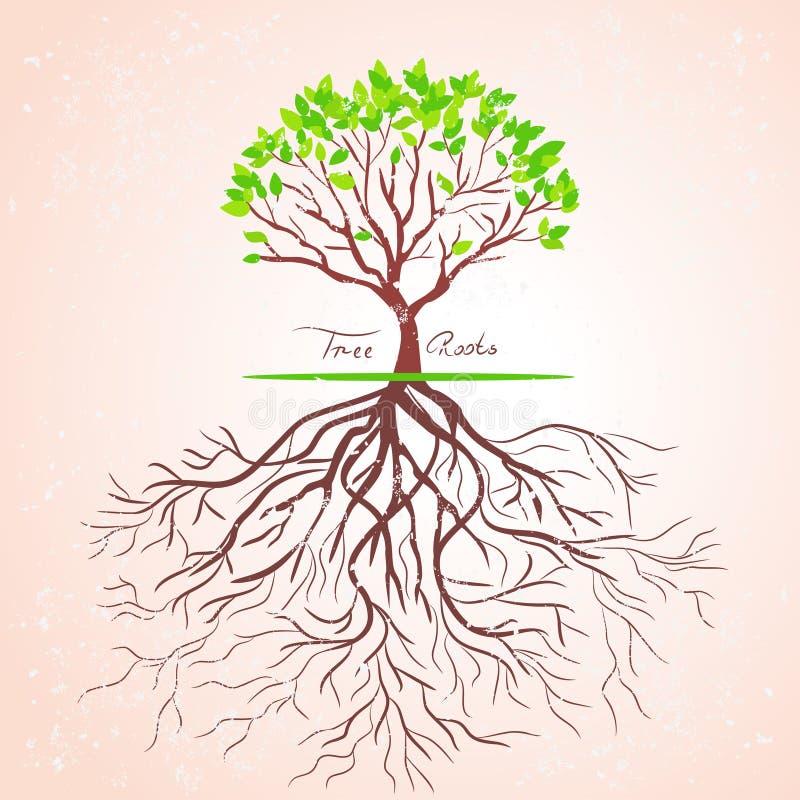 Treen rotar royaltyfri illustrationer