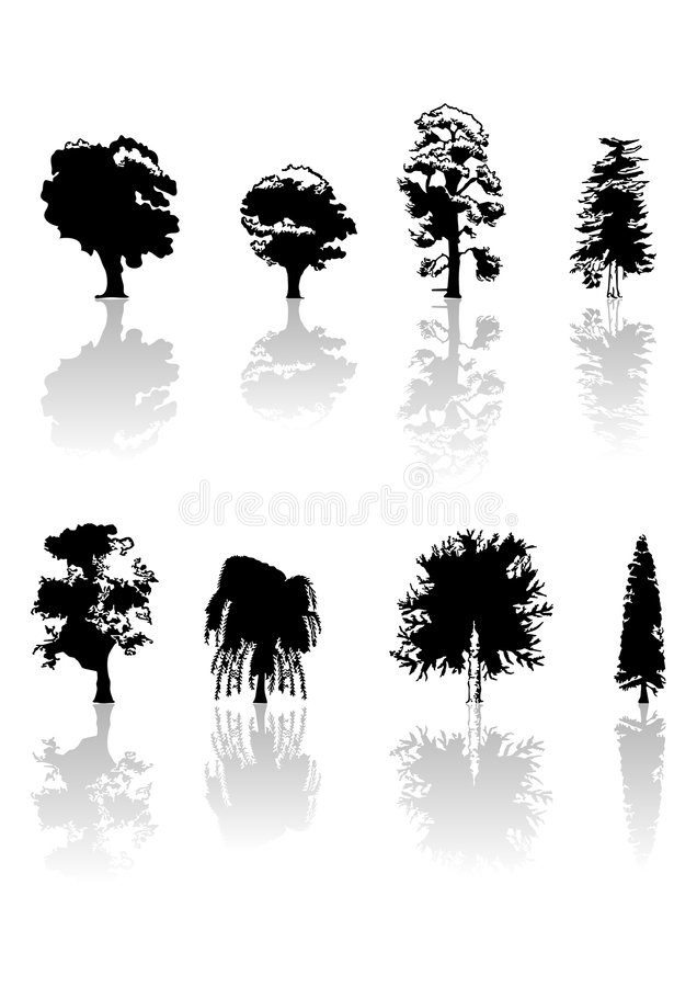 Free Trees Royalty Free Stock Images - 1650319