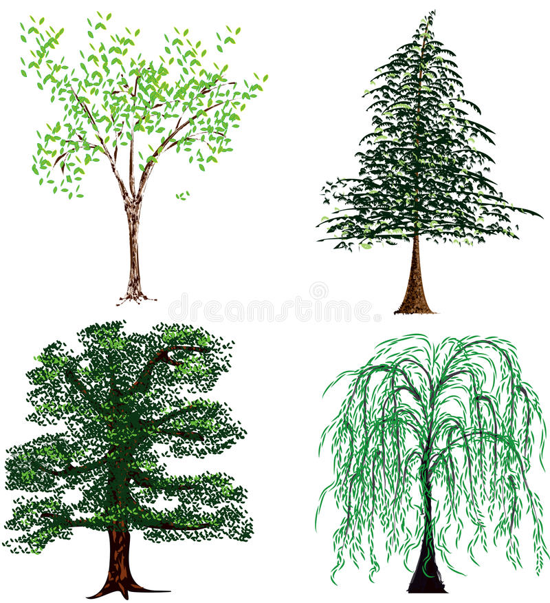 trees stock illustrationer
