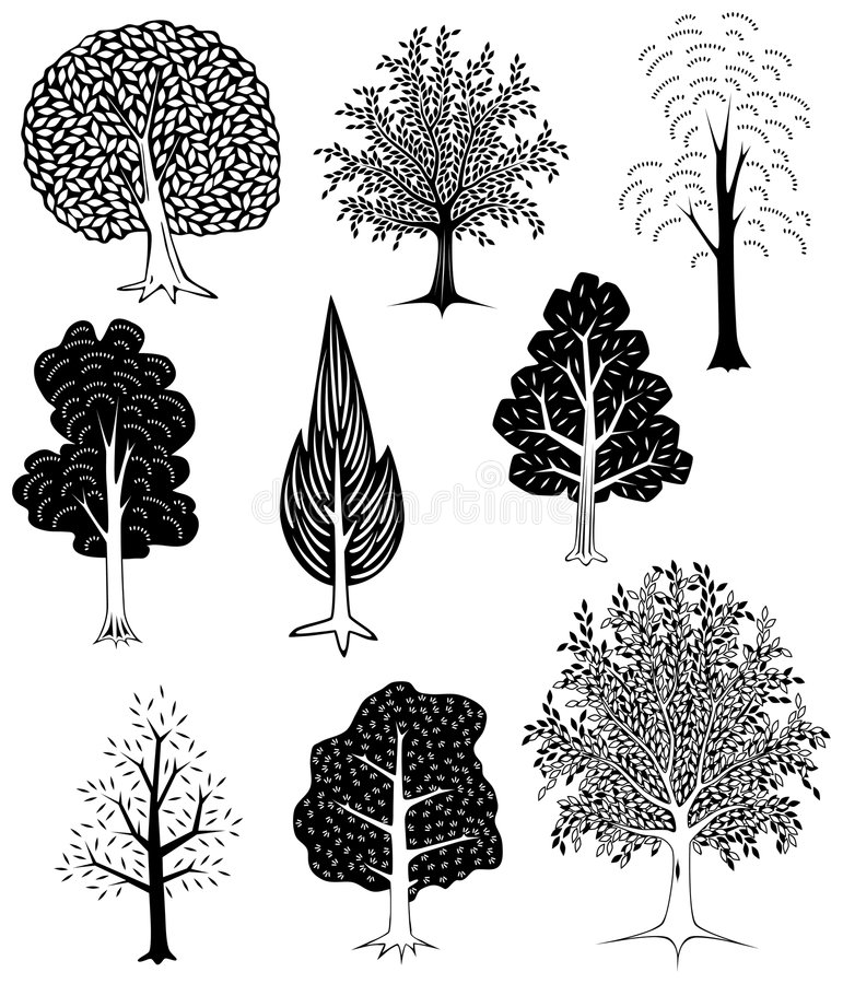 Trees royalty free illustration