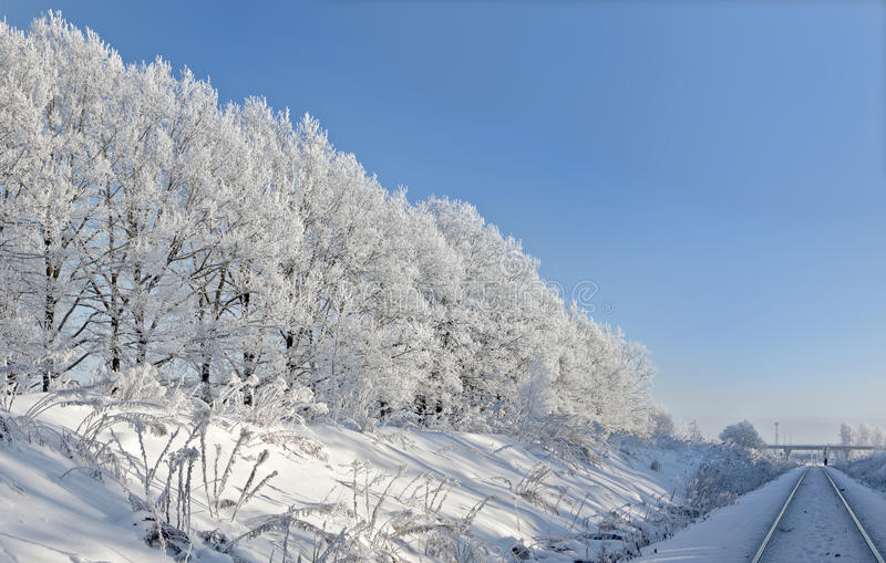 Trees against the blue sky. Railway. Trees against the blue sky. On branches plentiful hoarfrost. The shining sun shines sideways. Railway stock image