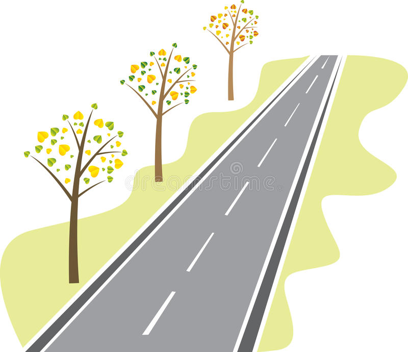 Trees along the road. Trees with leaves from the asphalt road royalty free illustration