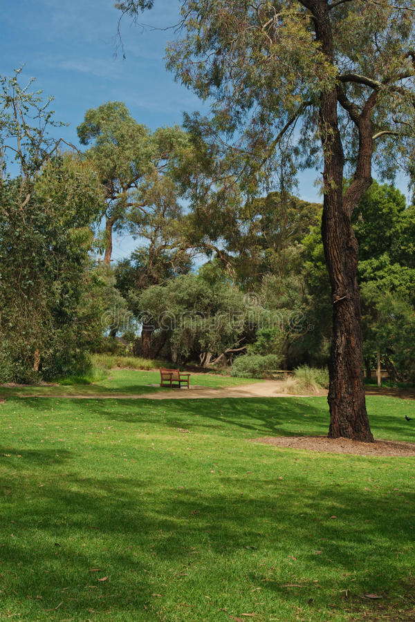 Free Trees And Bench In Park Royalty Free Stock Photography - 27562077